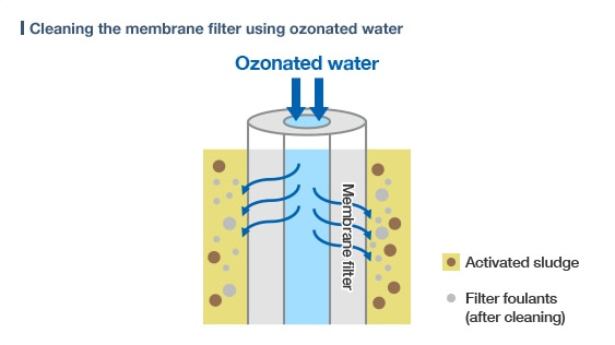 diagram: Cleaning the membrane filter using ozonated water