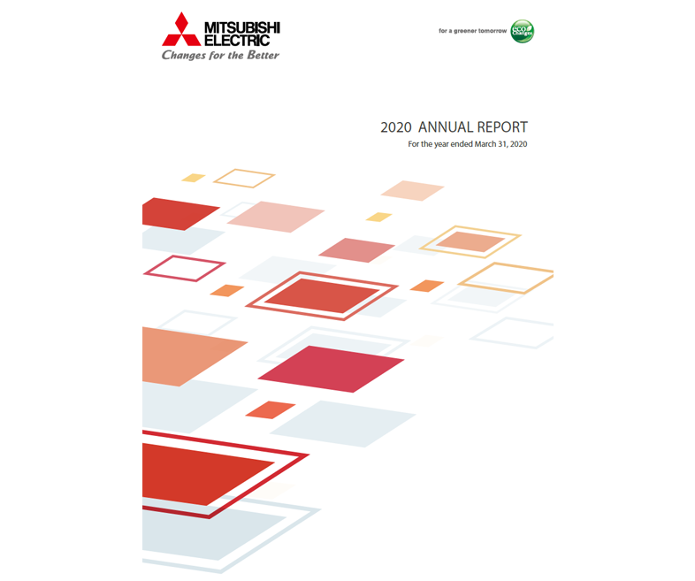 document: 2020 annual report